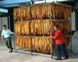 Tobacco leaf dryer